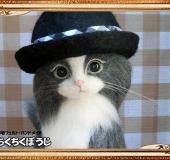 羊毛フェルト 猫 ボーラーハットと革靴