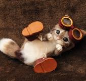 羊毛フェルト 寝っ転がり猫 ゴーグルと革靴