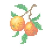 オレンジ クロス・ステッチ図案